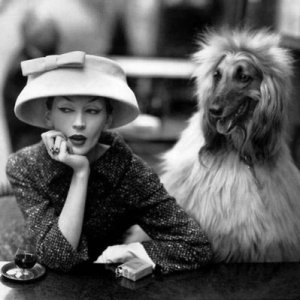 1955 Richard Avedon -  Dovima